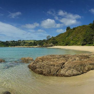 Waiheke Island Autumn Special @ Hekerua Lodge Backpackers