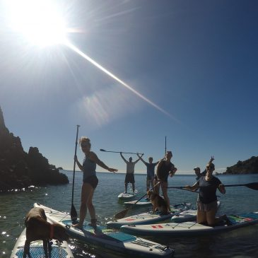 Waiheke Winter Warm up Paddle Board Tour